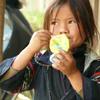 東南アジア 山岳民族 図鑑 解説ベトナム 北部 サパ モン族 花モン族